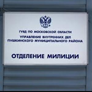 Отделения полиции Атяшево